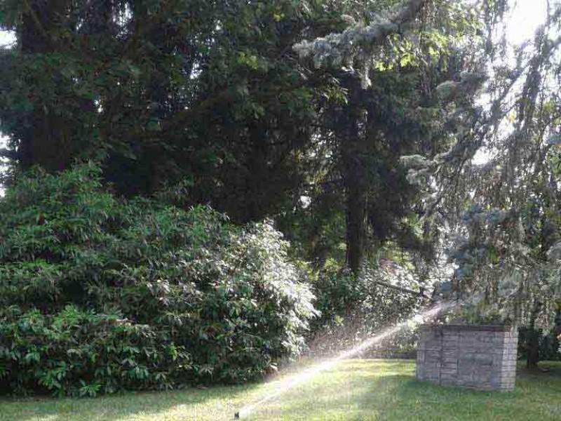 Azienda agricola servizi terzi per l 39 agricoltura for Progetto irrigazione